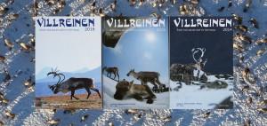 """Nå kan du bli redaktør for årboka """"Villreinen"""". Foto: Arne Nyaas"""